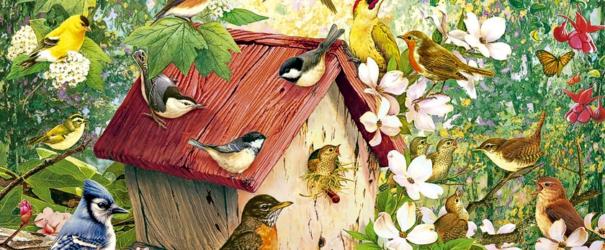 Отмечаем «День птиц»